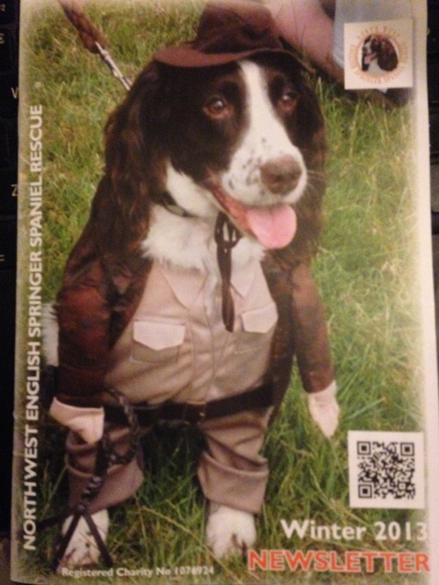 A dog called Paddy Cutler dressed as 'Indiana Bones' on the front cover of the magazine!