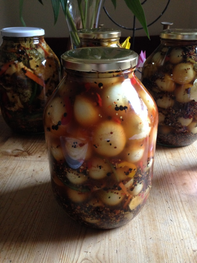 Yet another jar of spicy festive pickles!