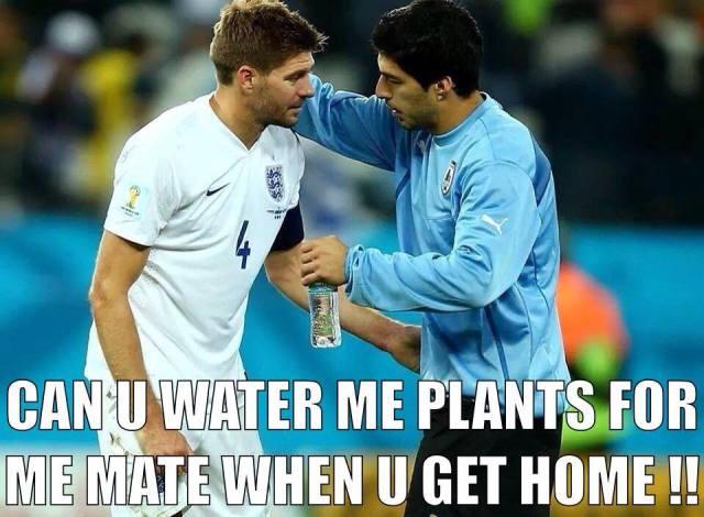 Never mind, England...