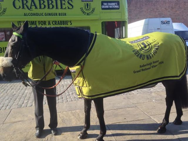 Grand National winner Amberleigh House at last night's International Business Conference
