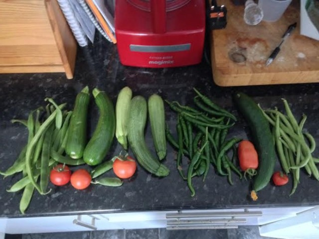 Some nice courgettes, runner & French beans, Jalapeno chillies, tomatoes & a cucumber!